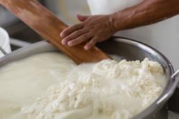 Caglio e formaggio